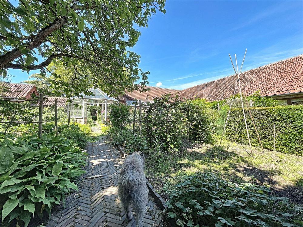 Foto 11 : Kantoorruimte te 1428 LILLOIS-WITTERZÉE (België) - Prijs € 1.600