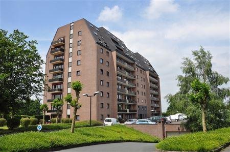 Duplex à 1400 NIVELLES (Belgique) - Prix 950€