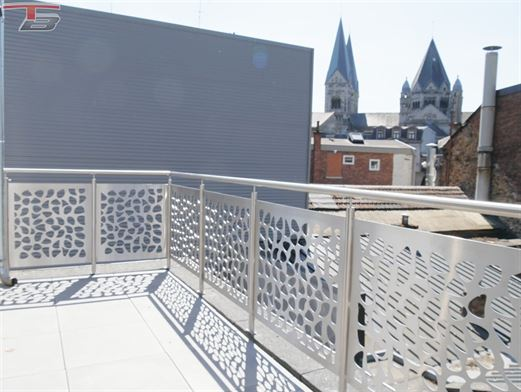 Appartements basse énergie neufs avec terrasses au centre